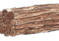 str 6-7 opow biblijne .jpg drewno